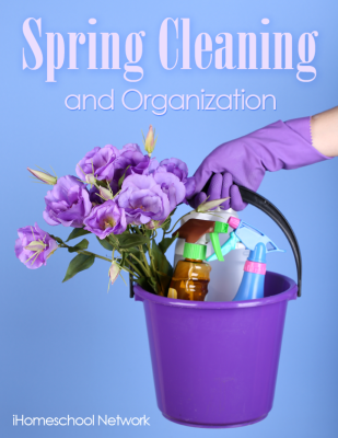 Spring Cleaning cover