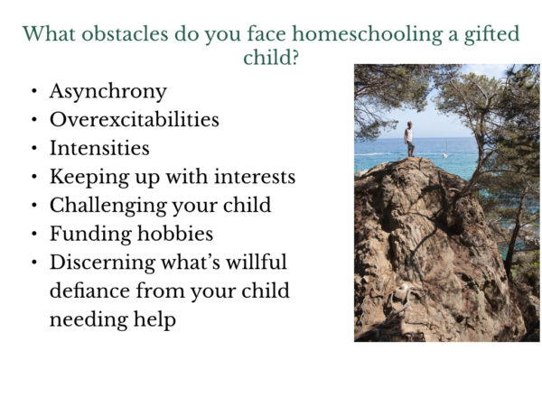 Obstacles to Homeschooling a Gifted Child