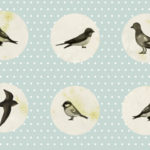 Nature Study and Bird Watching
