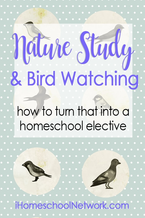 Nature Study and Bird Watching...and how to turn that into a homeschool elective for high school