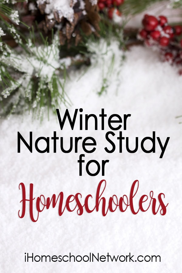 Winter Nature Study for Homeschoolers