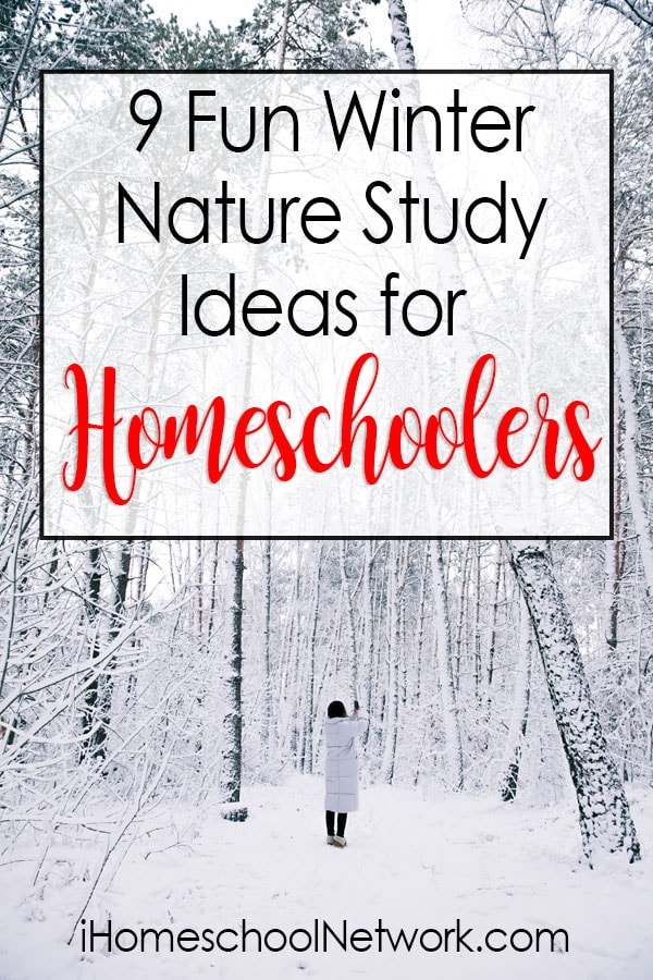 9 Fun Winter Nature Study Ideas for Homeschoolers