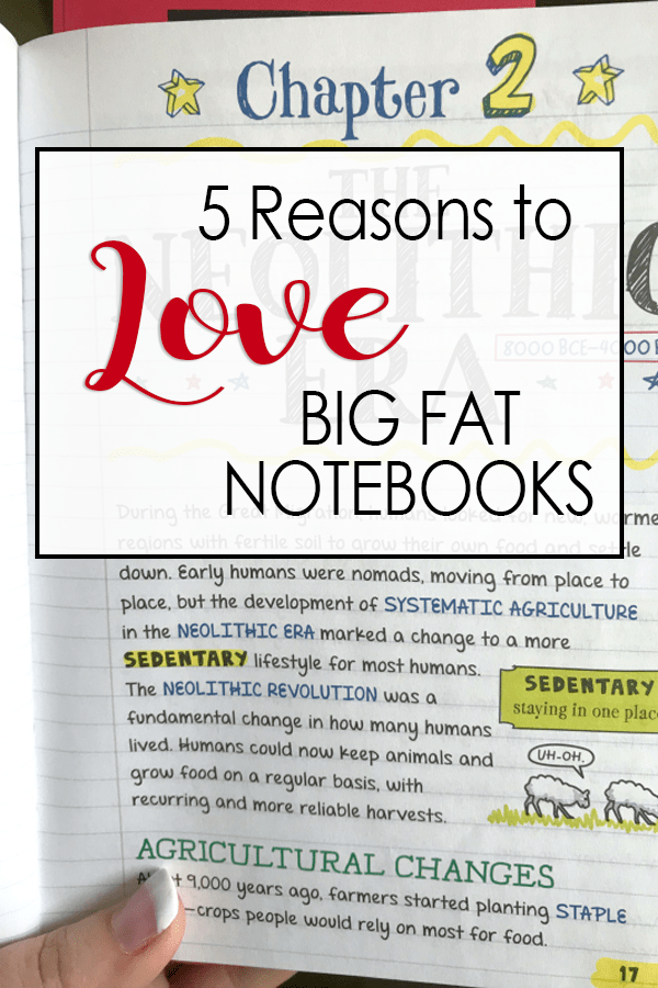 5 Reasons to Love BIG FAT NOTEBOOKS