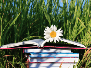 Where to Find Books for Summer Homeschool Reading
