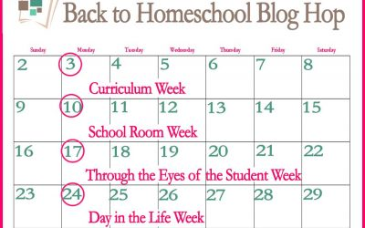 10th Annual Back to Homeschool Blog Hop: Through the Eyes of the Student