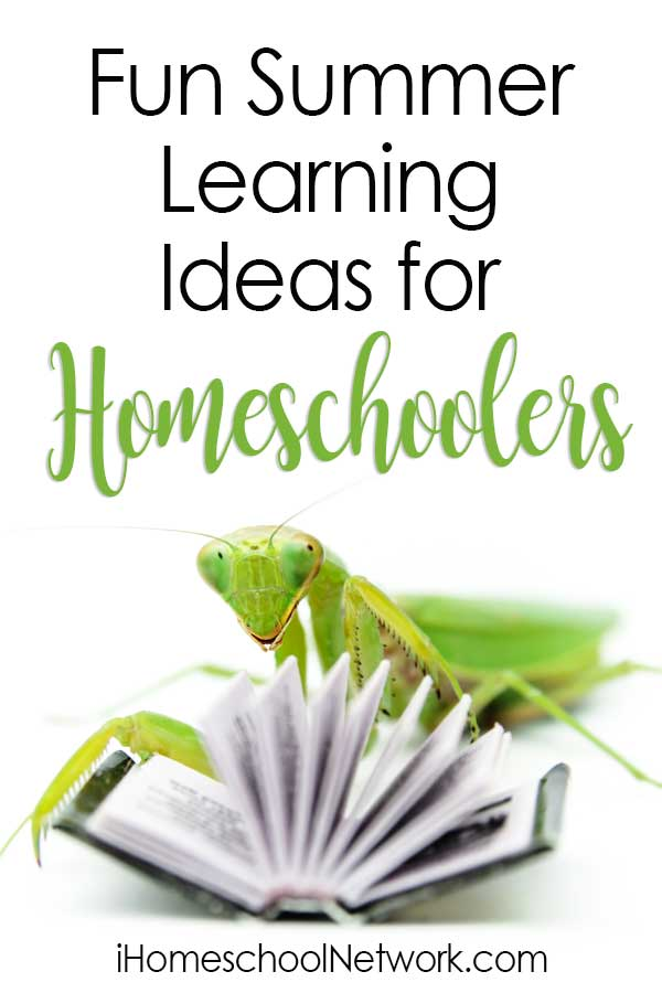 Fun Summer Learning Ideas for Homeschoolers